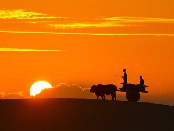 Mơ thấy mặt trời đánh con gì ăn chắc? Điềm hên hay xui?
